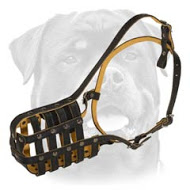 Rottweiler Felt Padded Leather Muzzle - Good Air Flow Walking Dog Muzzle