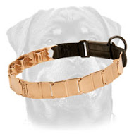 Curogan dog pinch collar made in Germany