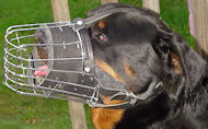 Fully Padded Easy Adjustable Dog Muzzle-Wire Cage Muzzle for Attack/Agitation Work