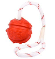 Similar to Everlasting Fun Ball on a Rope for Rottweiler - 2 3/4 inches (7 cm)