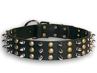 Rottweiler Studed and Spiked Leather Dog Collar Is Good for All Dog Breeds
