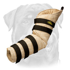Rottweiler bite dog sleeve hidden protection