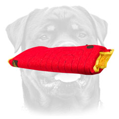 Safe and comfortable     Rottweiler puppy sleeve