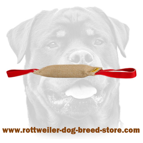 Stitched Jute Bite Tug For Rottweiler