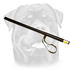 Rottweiler professional attack motivation     stick