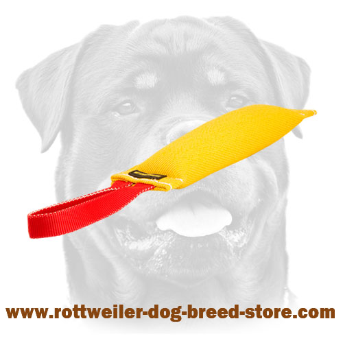 French Linen Bite Tug For Rottweiler training