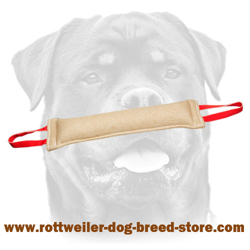 Jute Rottweiler tug with stitched handles