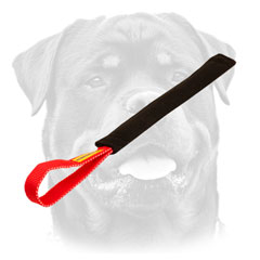 Rottweiler puppy training     tug with one handle