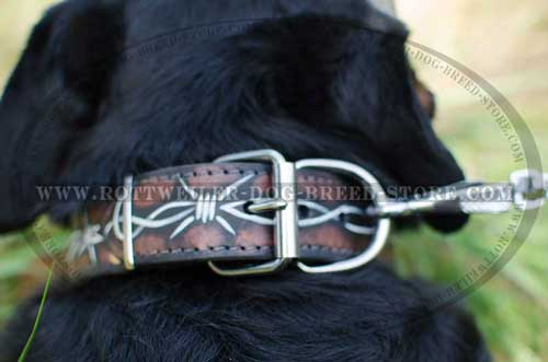 Painted Rottweiler Collar with Hard Buckle and D-Ring