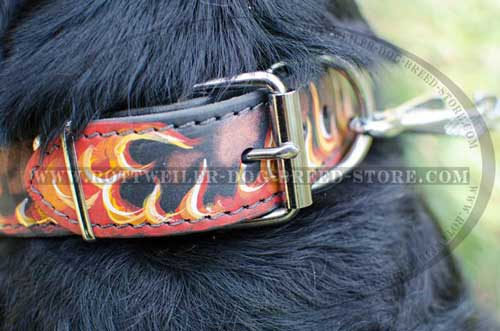 Hand Painted Rottweiler Collar has Massive Buckle/D-Ring
