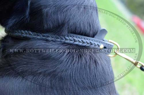 Durable dee Ring for Rottweiler Collar