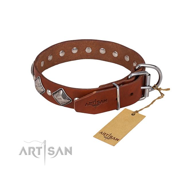 Strong leather dog collar with reliable fittings