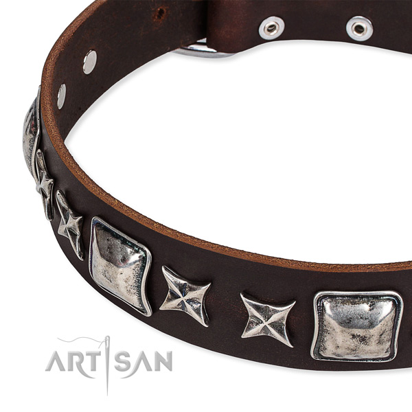 Full grain natural leather dog collar with embellishments for comfortable wearing