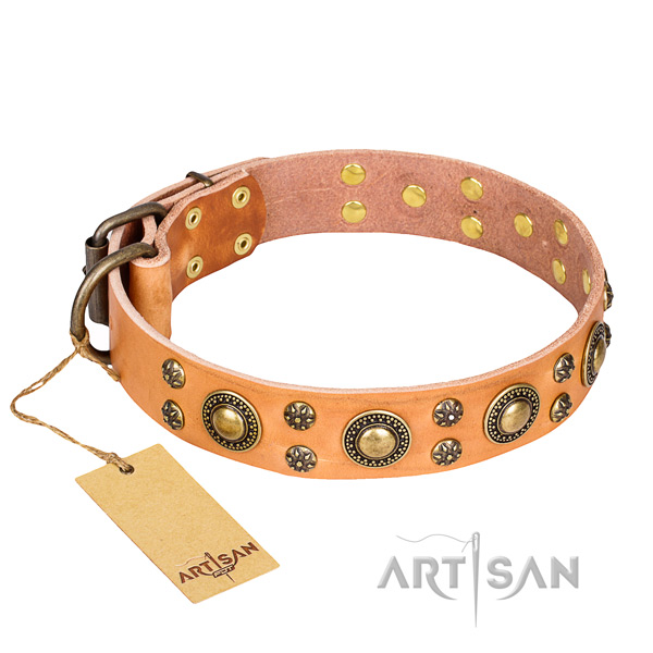 Extraordinary genuine leather dog collar for everyday use