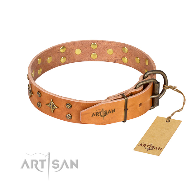 Daily walking leather collar with decorations for your doggie