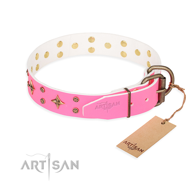 Stylish walking full grain natural leather collar with adornments for your four-legged friend
