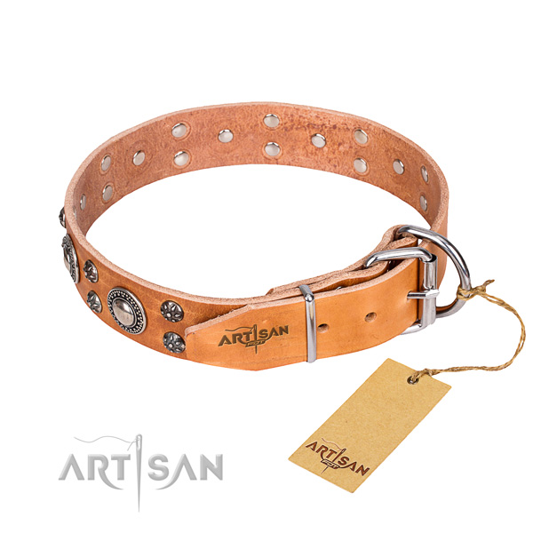 Everyday walking leather collar with embellishments for your dog