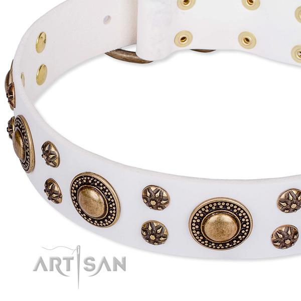 Natural genuine leather dog collar with impressive studs