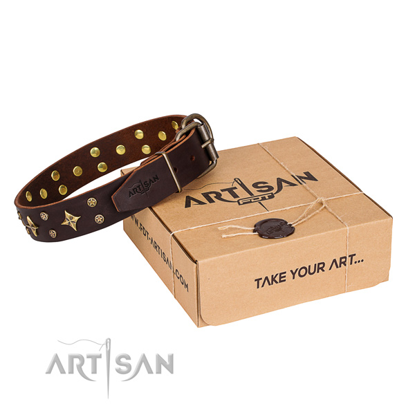 Decorated full grain leather dog collar for walking