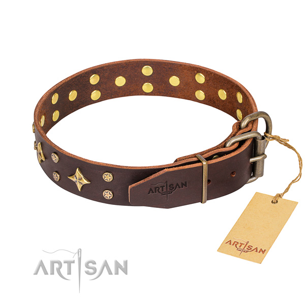 Walking full grain natural leather collar with adornments for your doggie