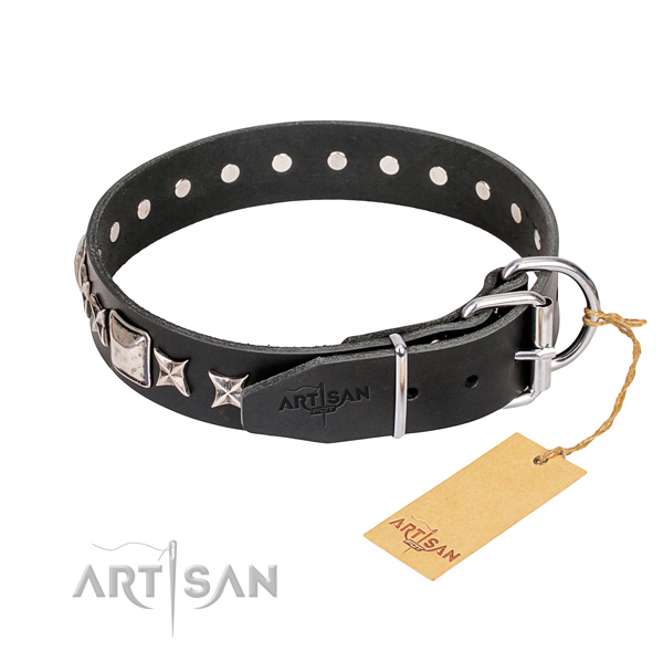 Everyday walking genuine leather collar with embellishments for your dog