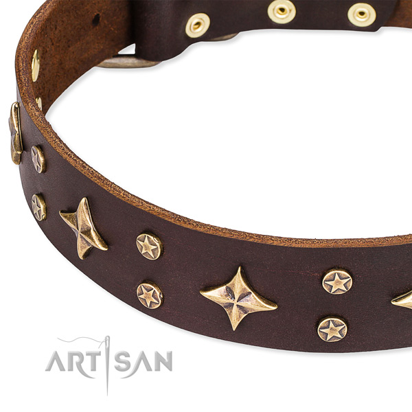 Full grain genuine leather dog collar with incredible adornments