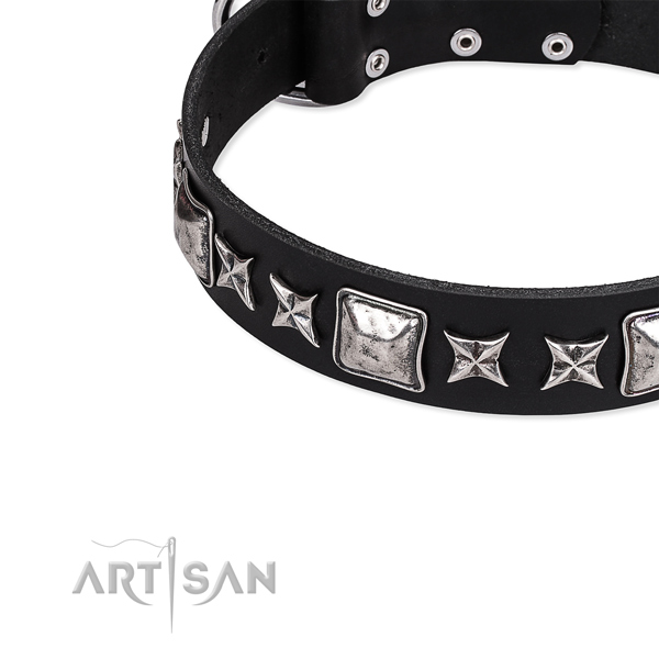 Full grain natural leather dog collar with stunning adornments