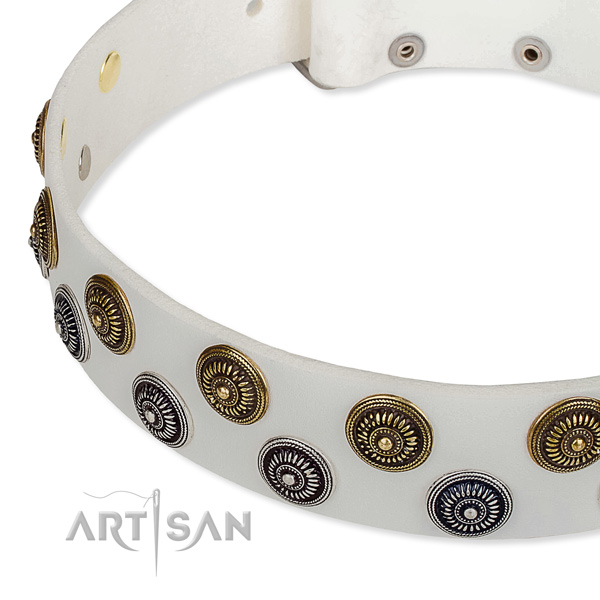 Genuine leather dog collar with extraordinary studs