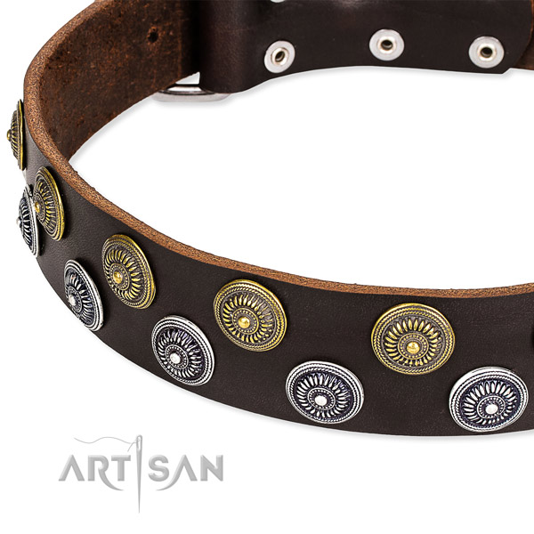 Genuine leather dog collar with trendy adornments