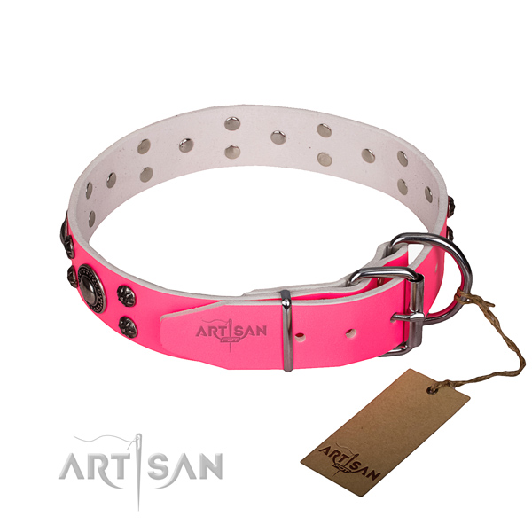 Everyday use leather collar with corrosion resistant buckle and D-ring