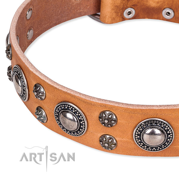 Stylish walking full grain genuine leather collar with corrosion resistant buckle and D-ring