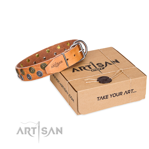 Full grain leather dog collar with adornments for everyday use