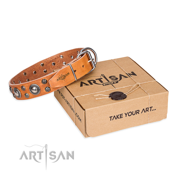 Awesome full grain natural leather dog collar for everyday walking