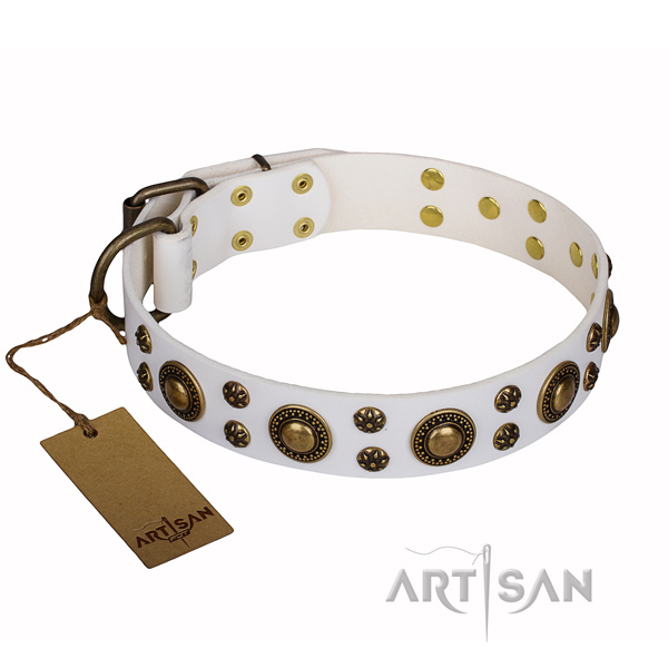 Daily use full grain natural leather collar with studs for your pet