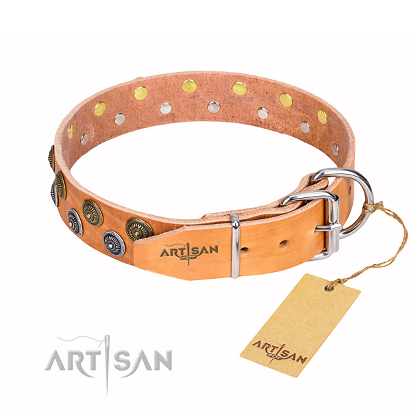 Amazing full grain genuine leather dog collar for daily walking