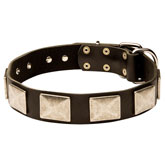 Leather Dog Collar With Vintage Massive Plates