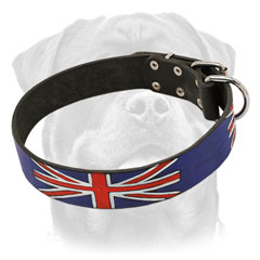 High quality leather Rottweiler     collar with exclusive design