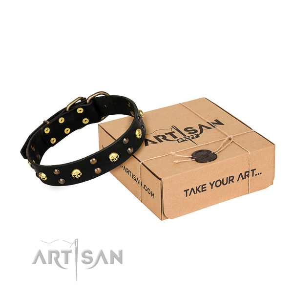 Everyday leather dog collar with elegant adornments