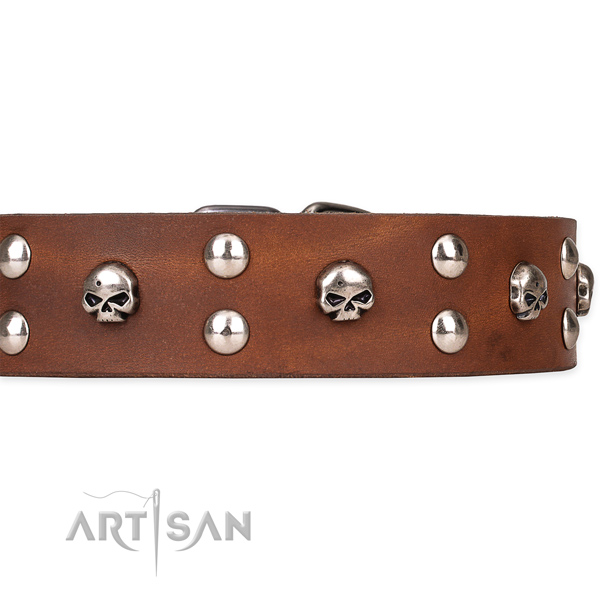 Full grain genuine leather dog collar with smooth finish