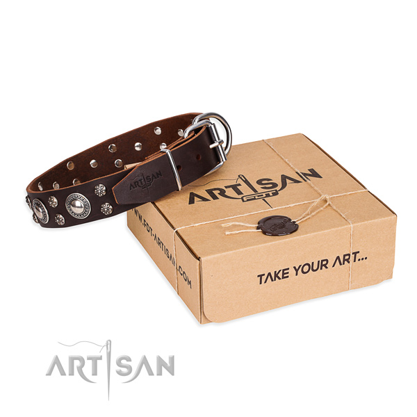 Daily leather dog collar with amazing adornments