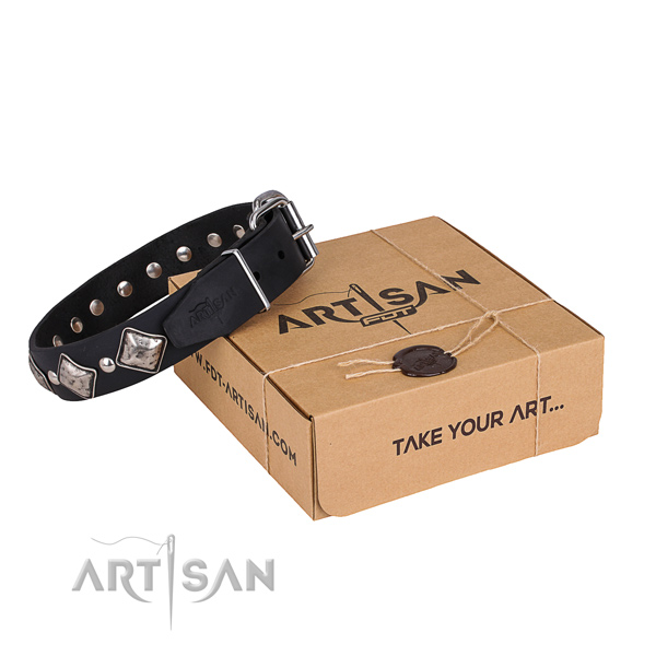 Day-to-day leather dog collar with stunning studs