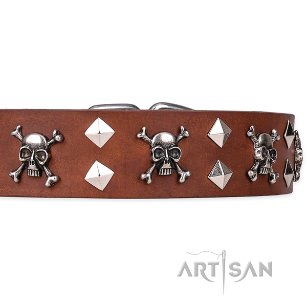 Everyday leather dog collar with fancy adornments