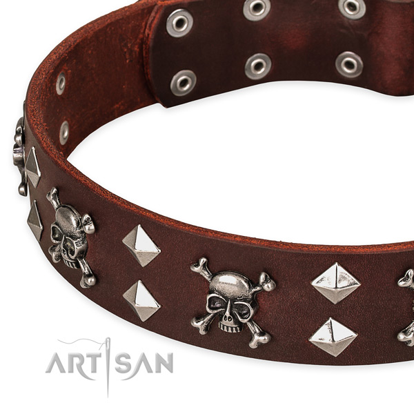 High quality leather dog collar for reliable use