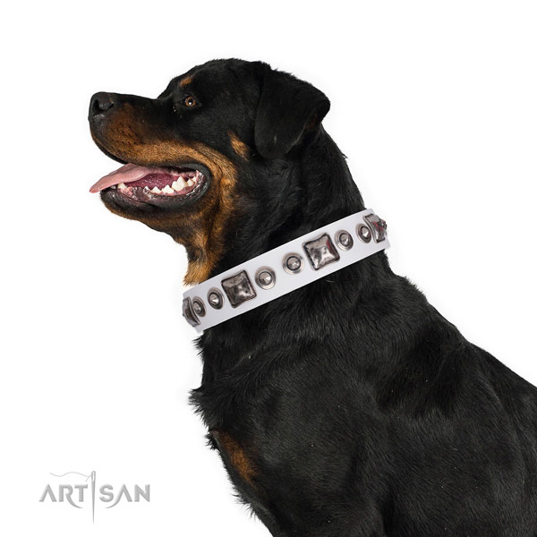 Unusual adorned natural leather dog collar for comfy wearing