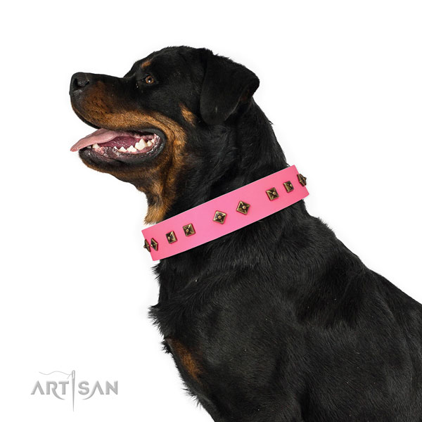 Significant studs on comfortable wearing dog collar