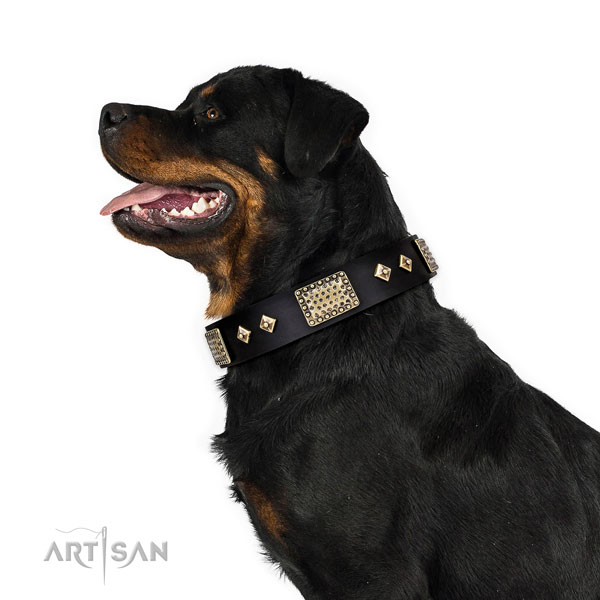 Strong walking dog collar of leather