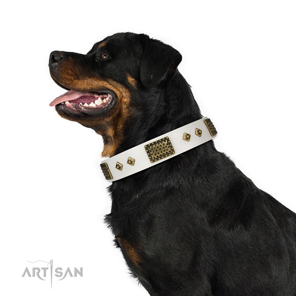 Easy wearing dog collar of genuine leather with inimitable embellishments