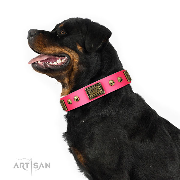 Rust resistant buckle on full grain natural leather dog collar for handy use
