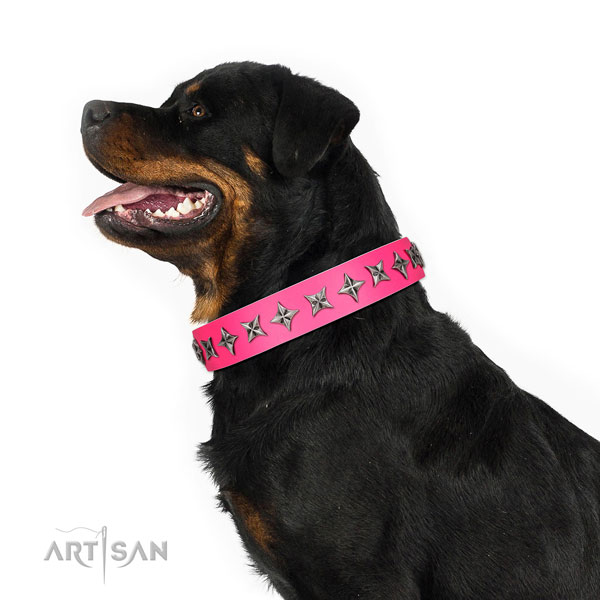 Fine quality natural leather dog collar with stylish studs