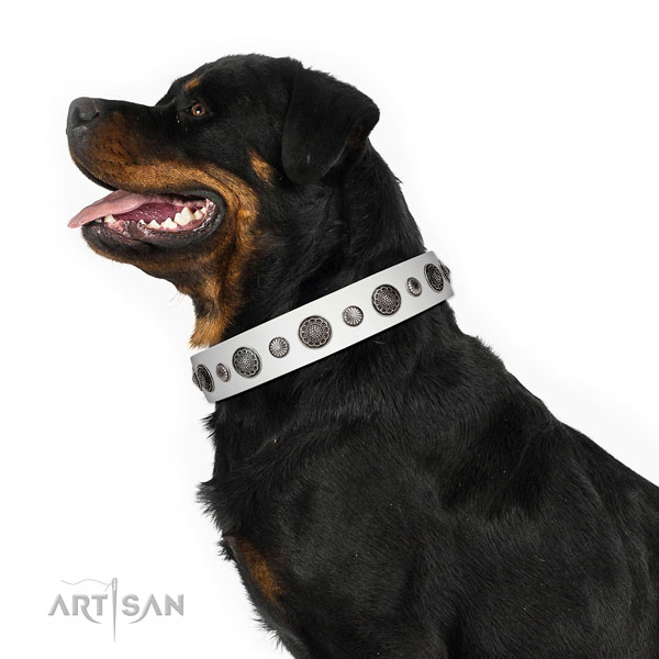 Fashionable genuine leather dog collar with rust-proof traditional buckle